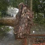 Θεομηνία με μεγάλες ζημιές  στο νομό Τρικάλων