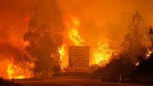Εφιαλτική τραγωδία στην Πορτογαλία