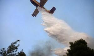 Φωτιά στην Ηλεία: – Αιχμές για τα αίτια της καταστροφής