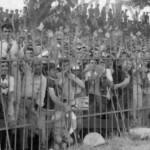 Το βίντεο του αγώνα Τρίκαλα – Ολυμπιακός το 1966